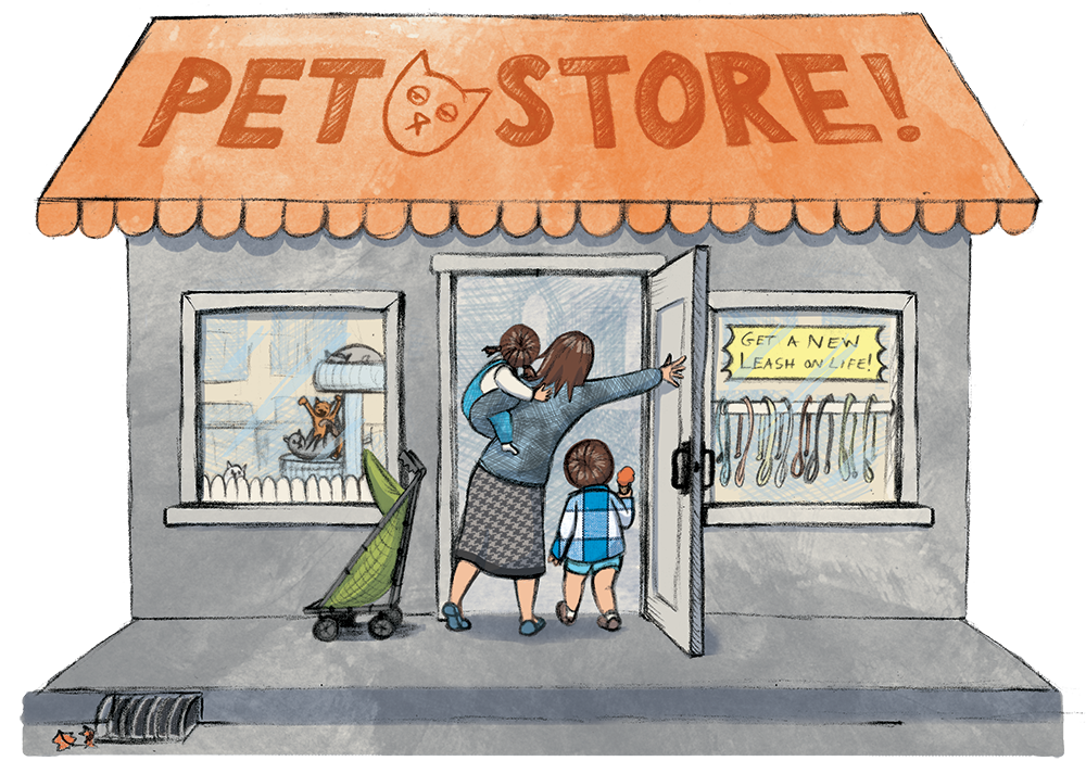 Pet Store, illustration by Jaime Temairik